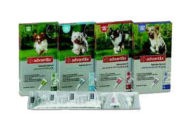 advantix hond